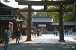 Когда лучше всего ехать в японию – Путешествие в Японию — сколько стоит поездка, как попасть, что посмотреть